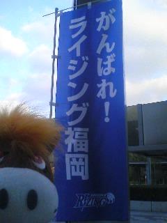 まるちゃん・キズナくんのライジングレポート(1)