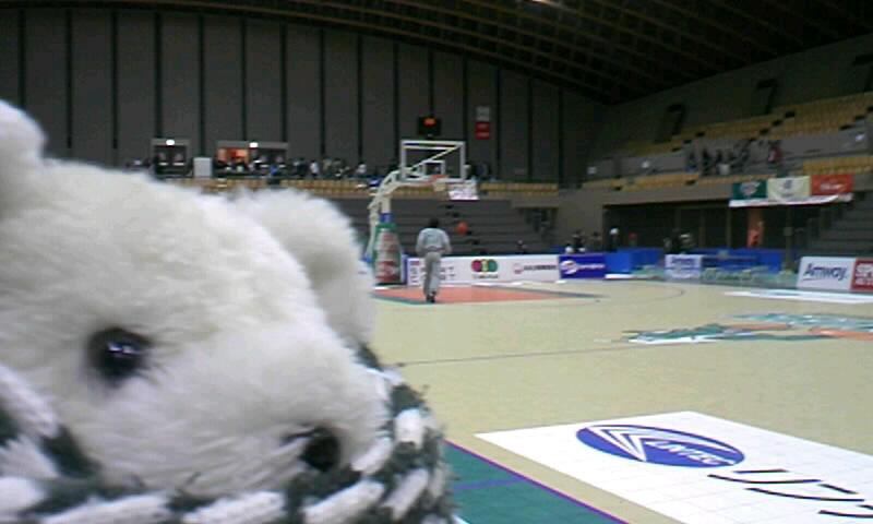 着いたら試合終了後 埼玉ブロンコスvs大阪エヴェッサ・土曜日