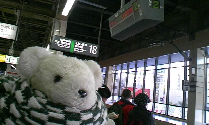 ラストアウェイくまちゃん07-08