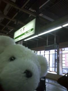 GoGoくまちゃん 富山往路編(10月18日午前の部)
