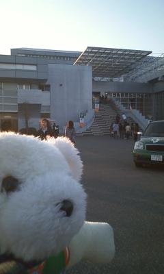 GOGOくまちゃん・ホームゲーム行田バスツアー