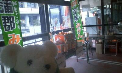 アウェイレポート2010-11浜松・東三河in蒲郡 グルメ編