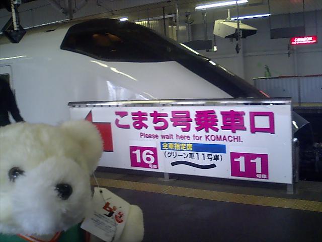くまちゃんが行く! 〜レギュラーシーズン最終節(その1)