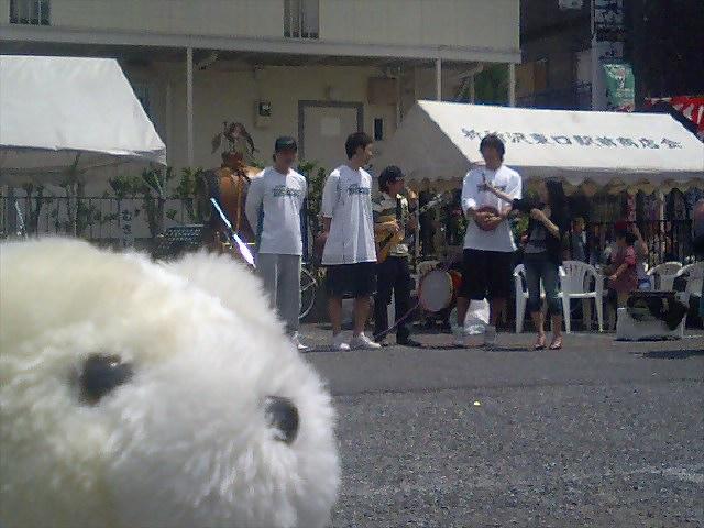 くまちゃんが行く!〜新所沢駅東口商店街パイン通り